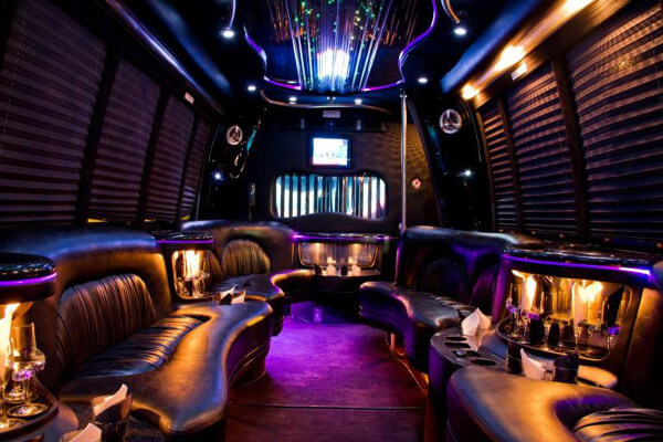 15 person party bus rental Chesapeake